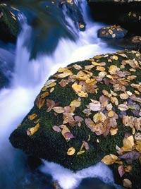 se_trails_river